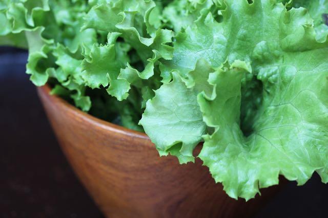 leaf lettuce.jpg