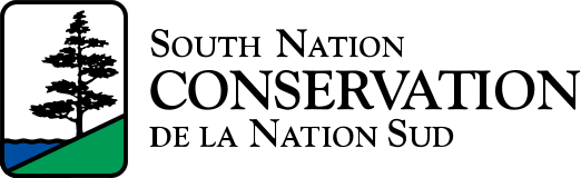 South Nation logo.png