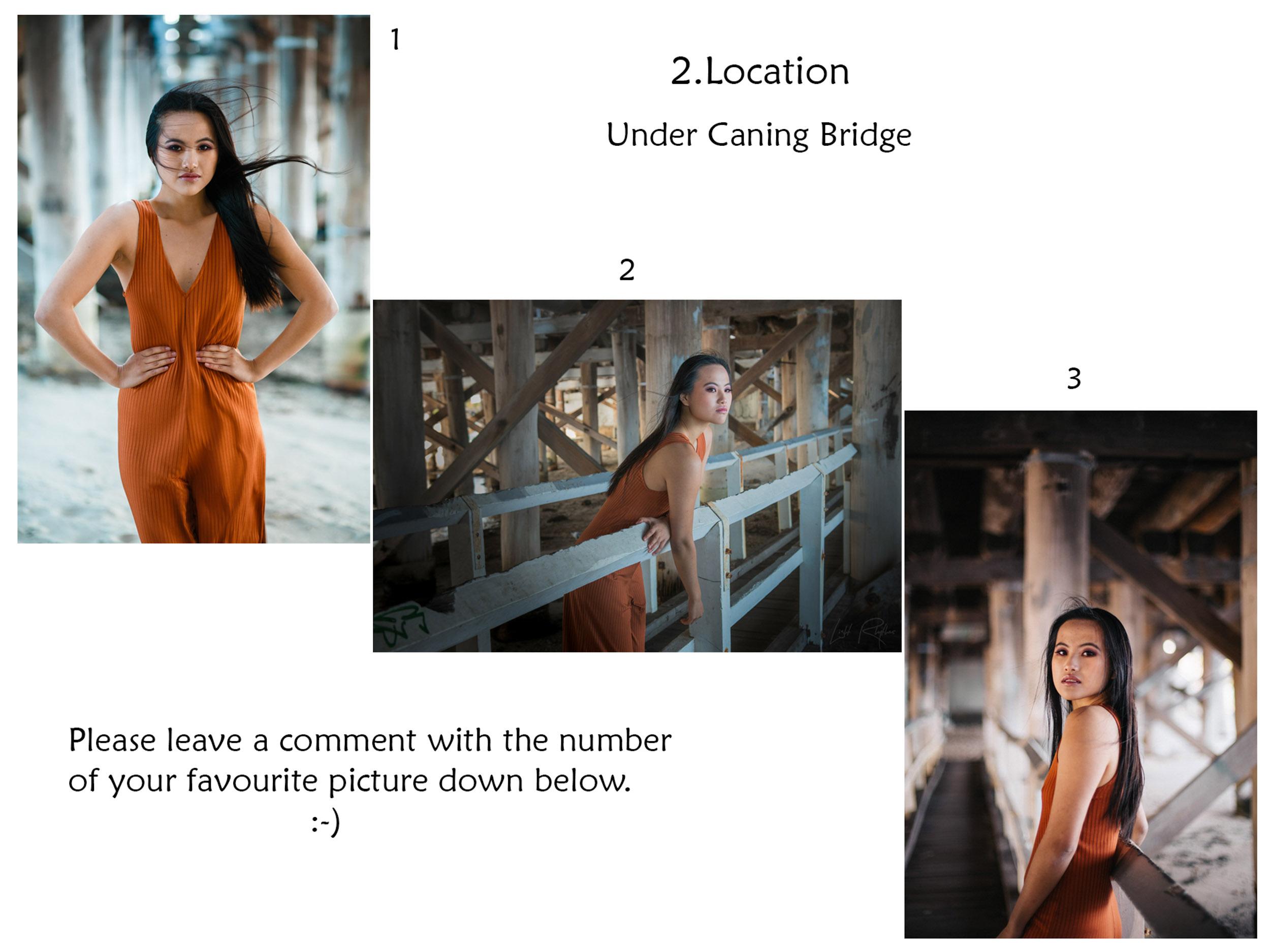 collage2sq.jpg