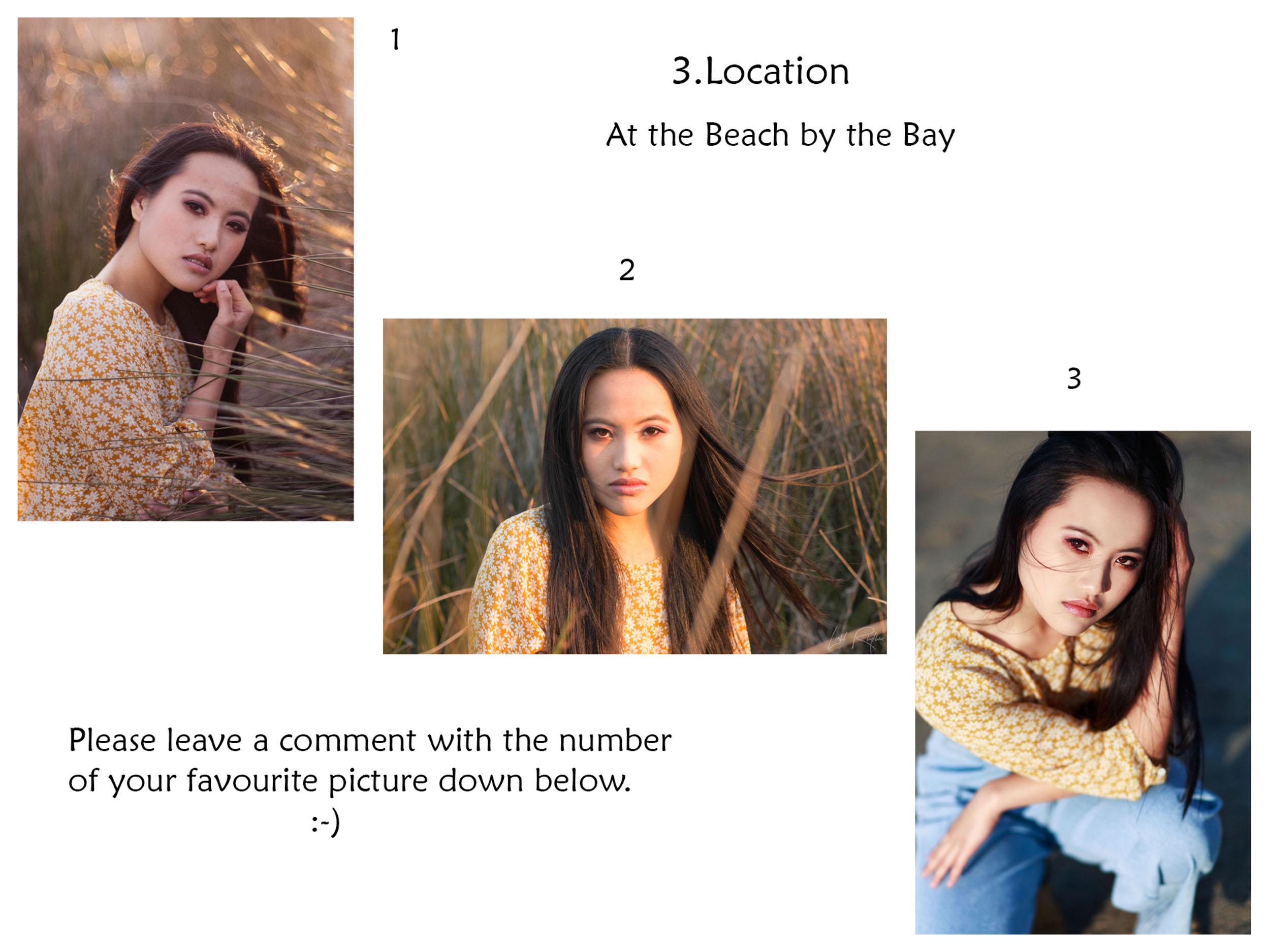 collage3sq.jpg