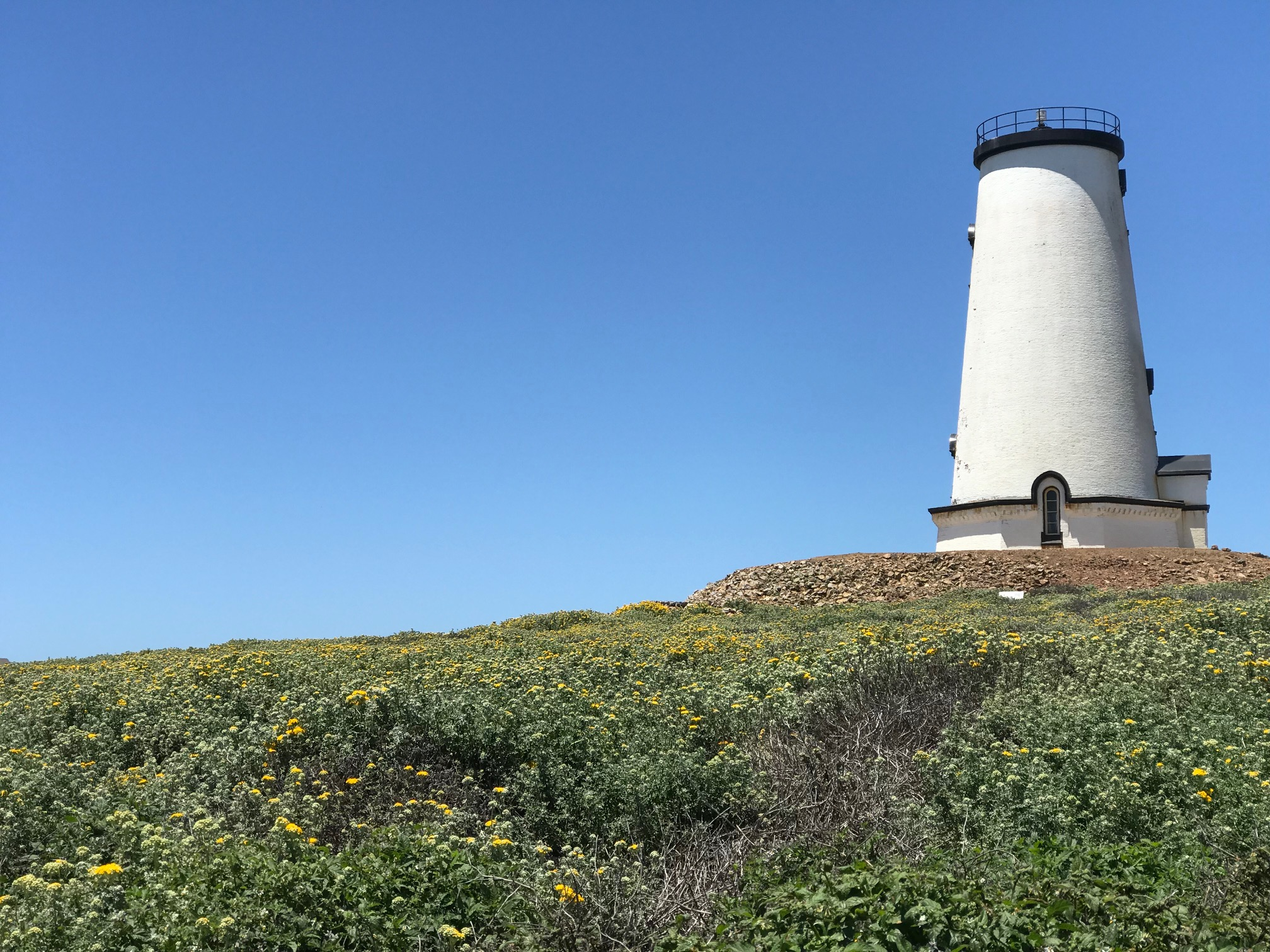 lighthouse .jpg