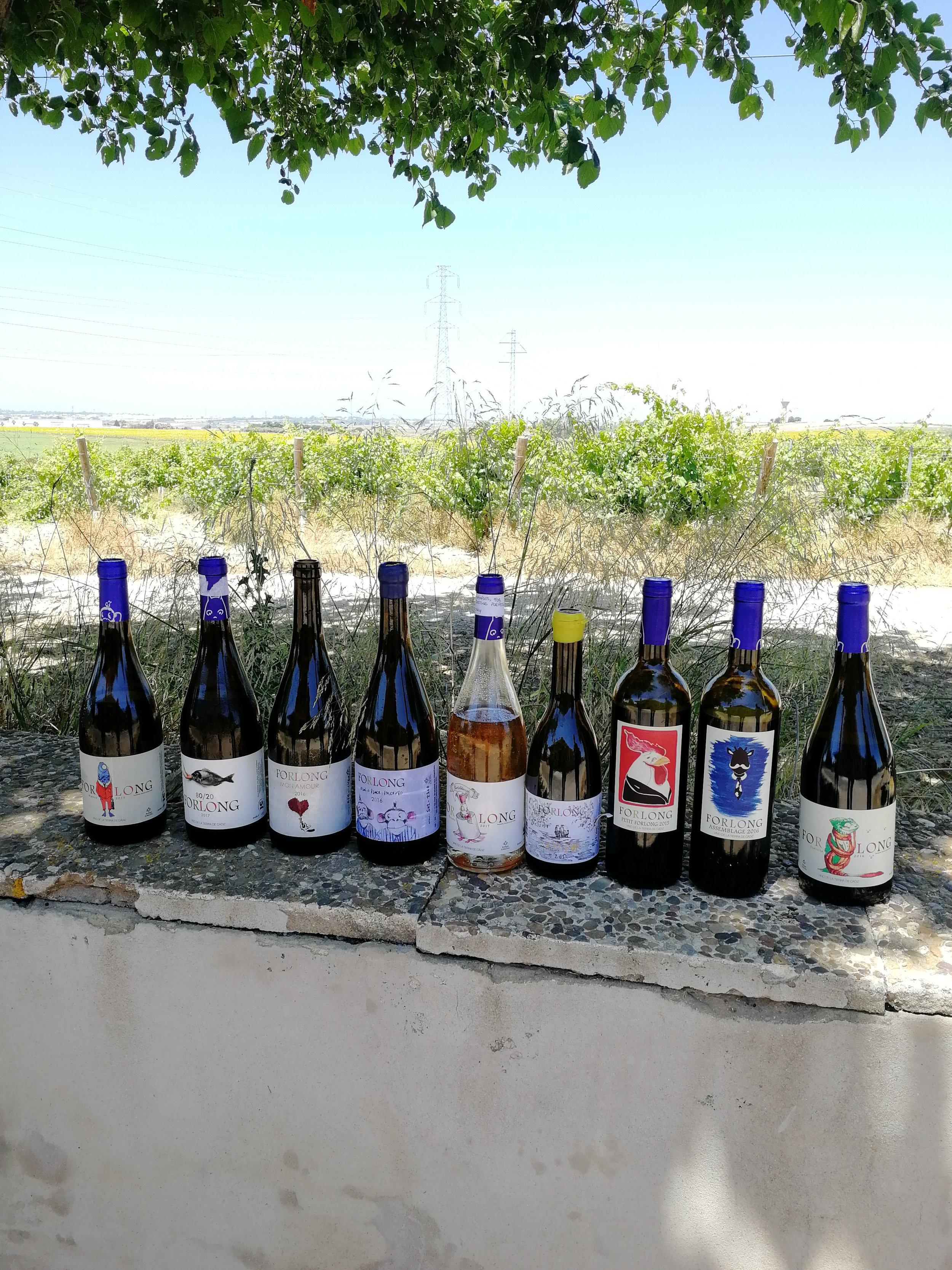 Forlong_wines.jpg