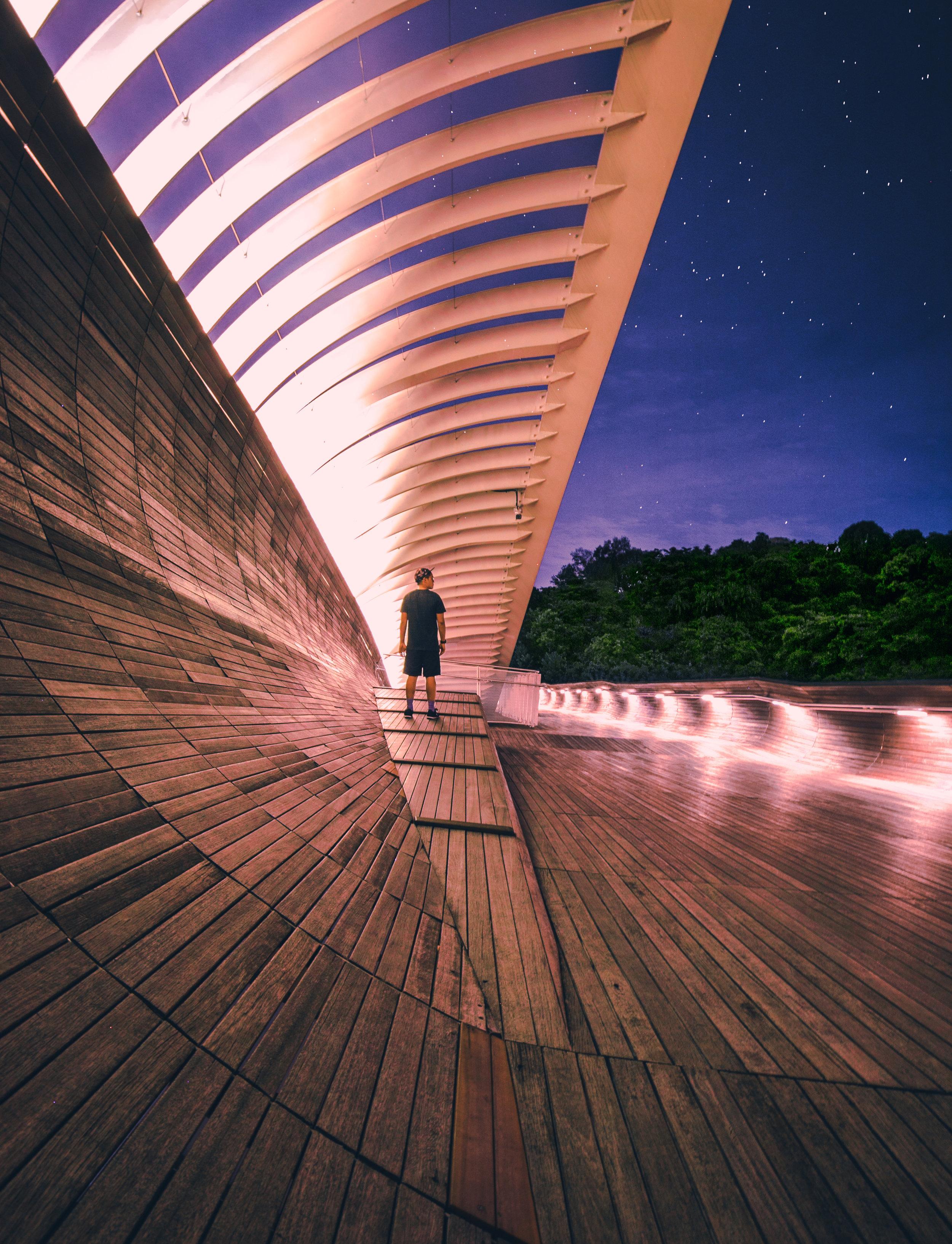 Henderson Waves, Singapore