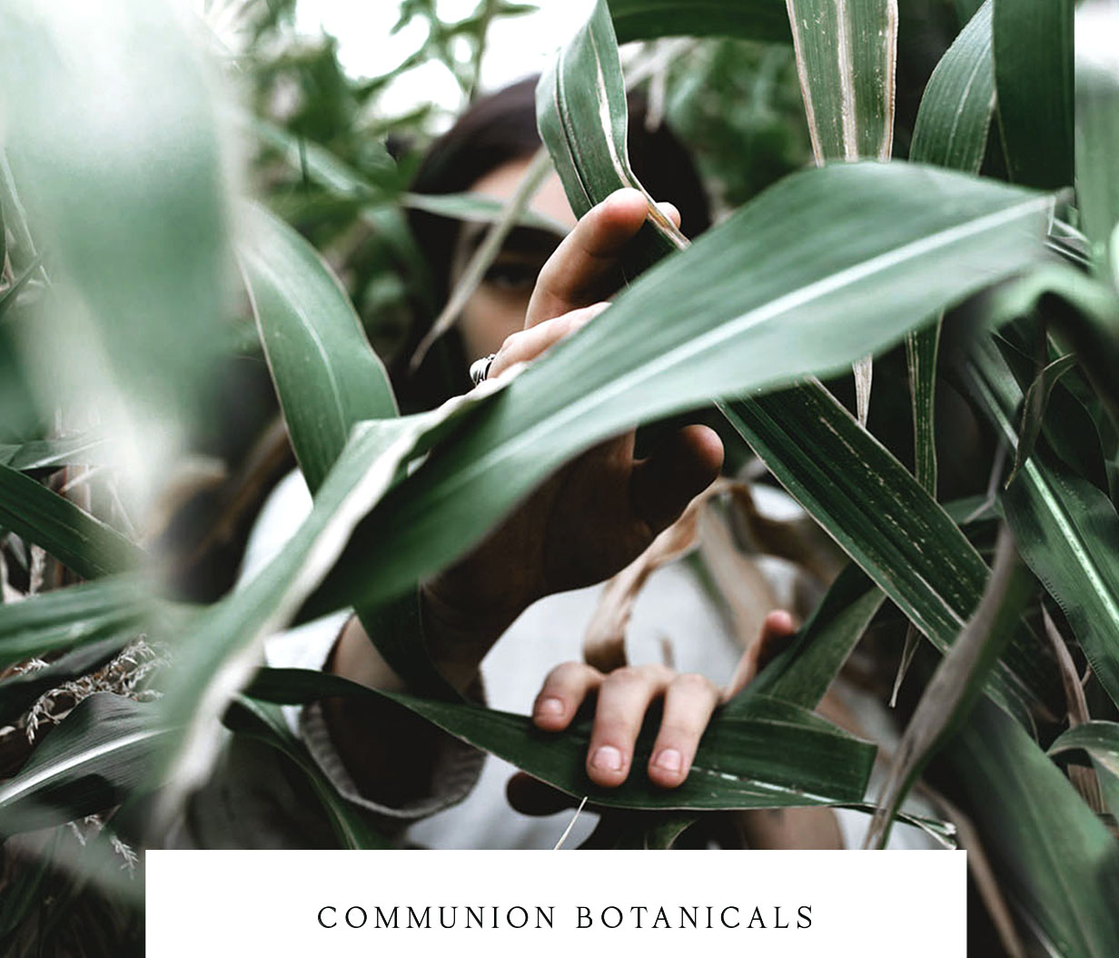 Communion Botanicals  Branding, Collateral, Packaging, Photography