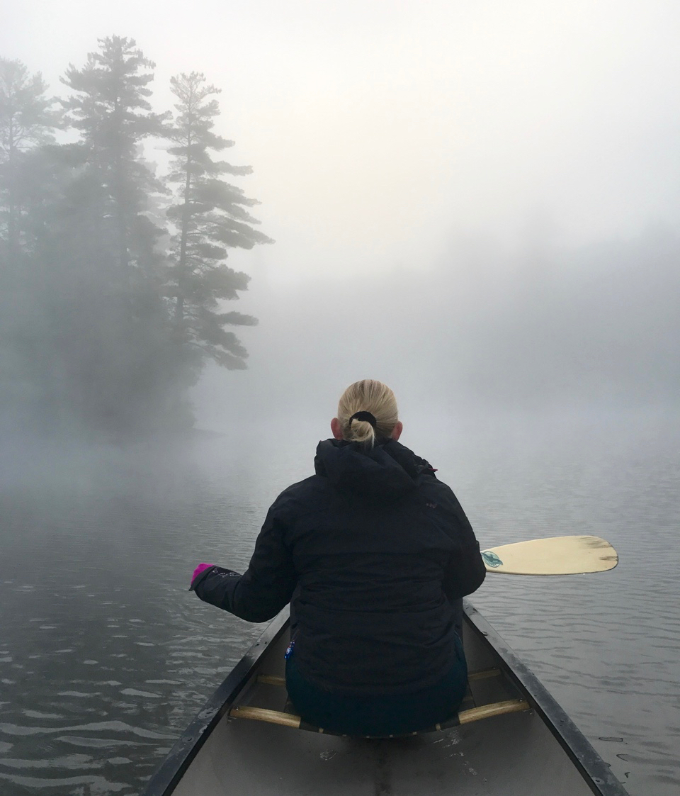 Negotiating the Mist