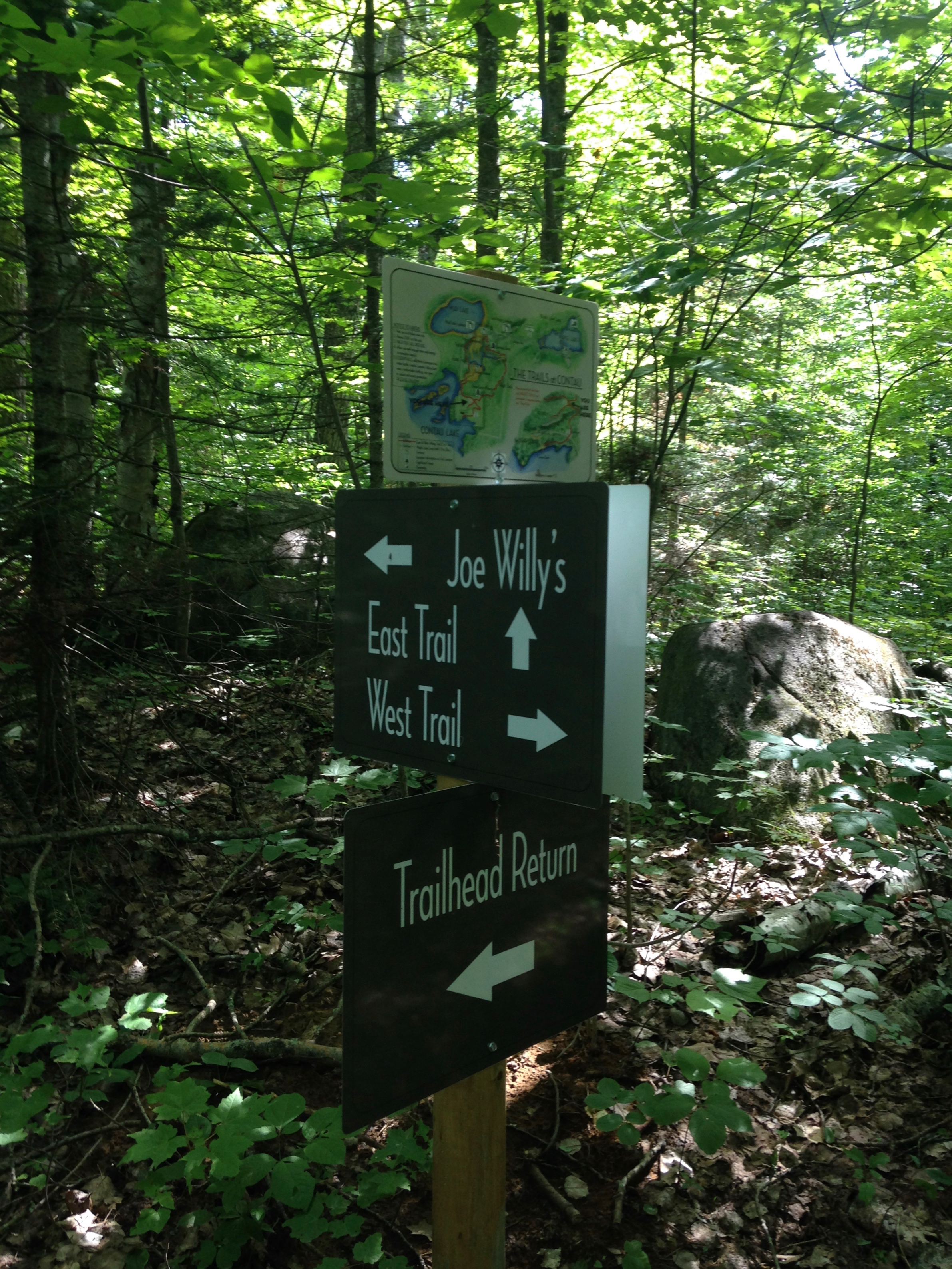 Endless Options for Hiking Enthusiasts at The Bear Stand