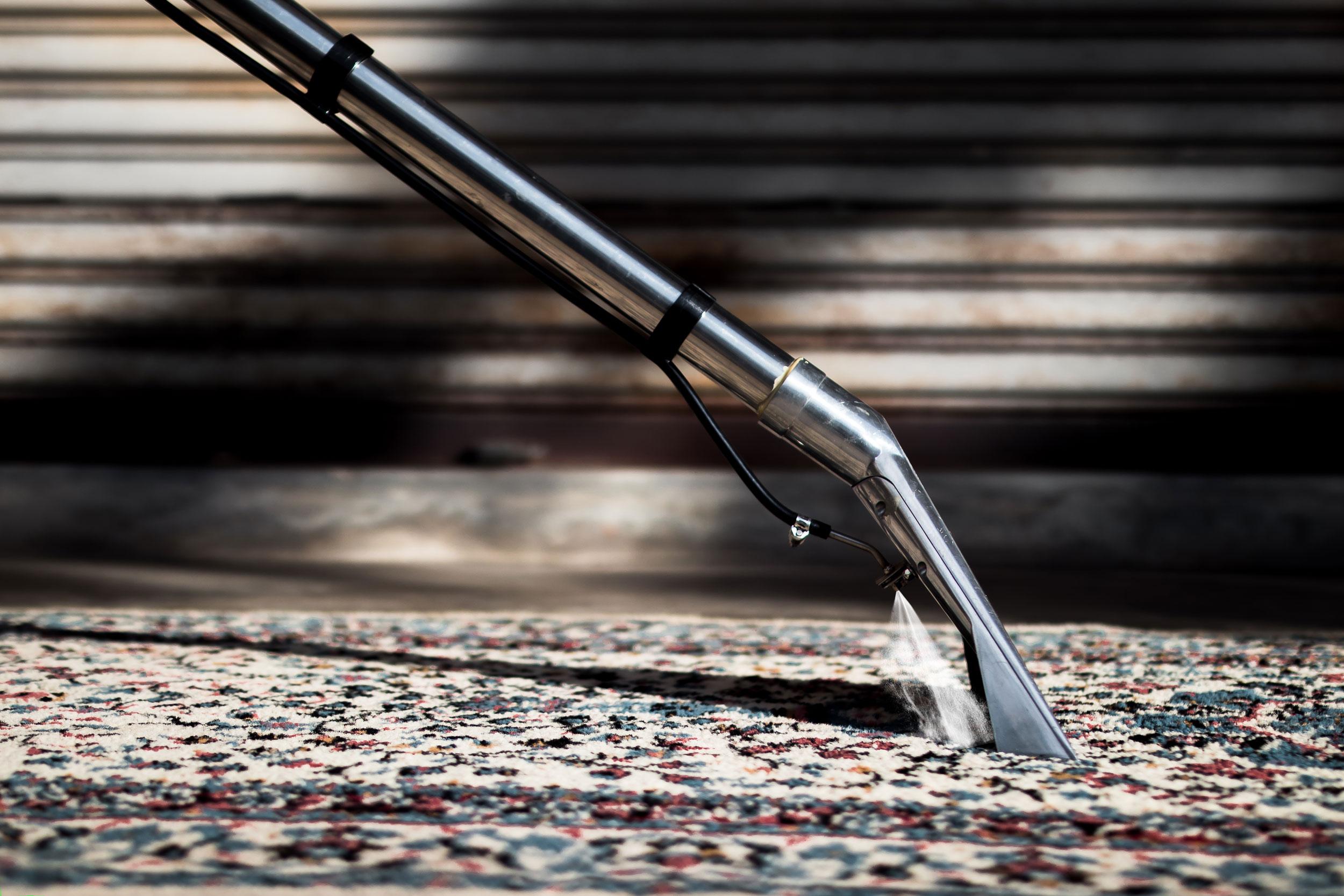 Upekkha™ Carpet & Upholstery Extractor