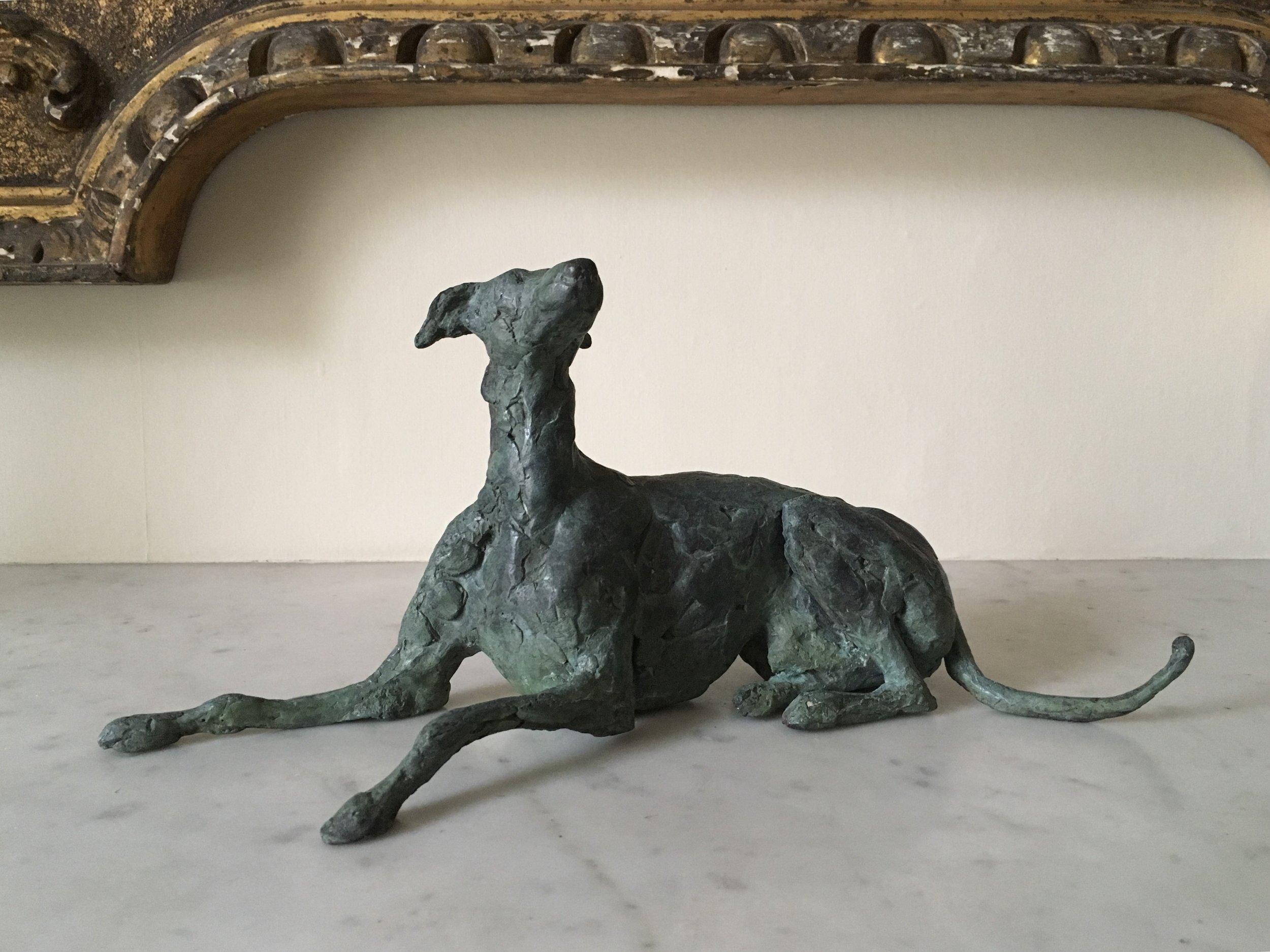Grey Whippet, Luca. Bronze
