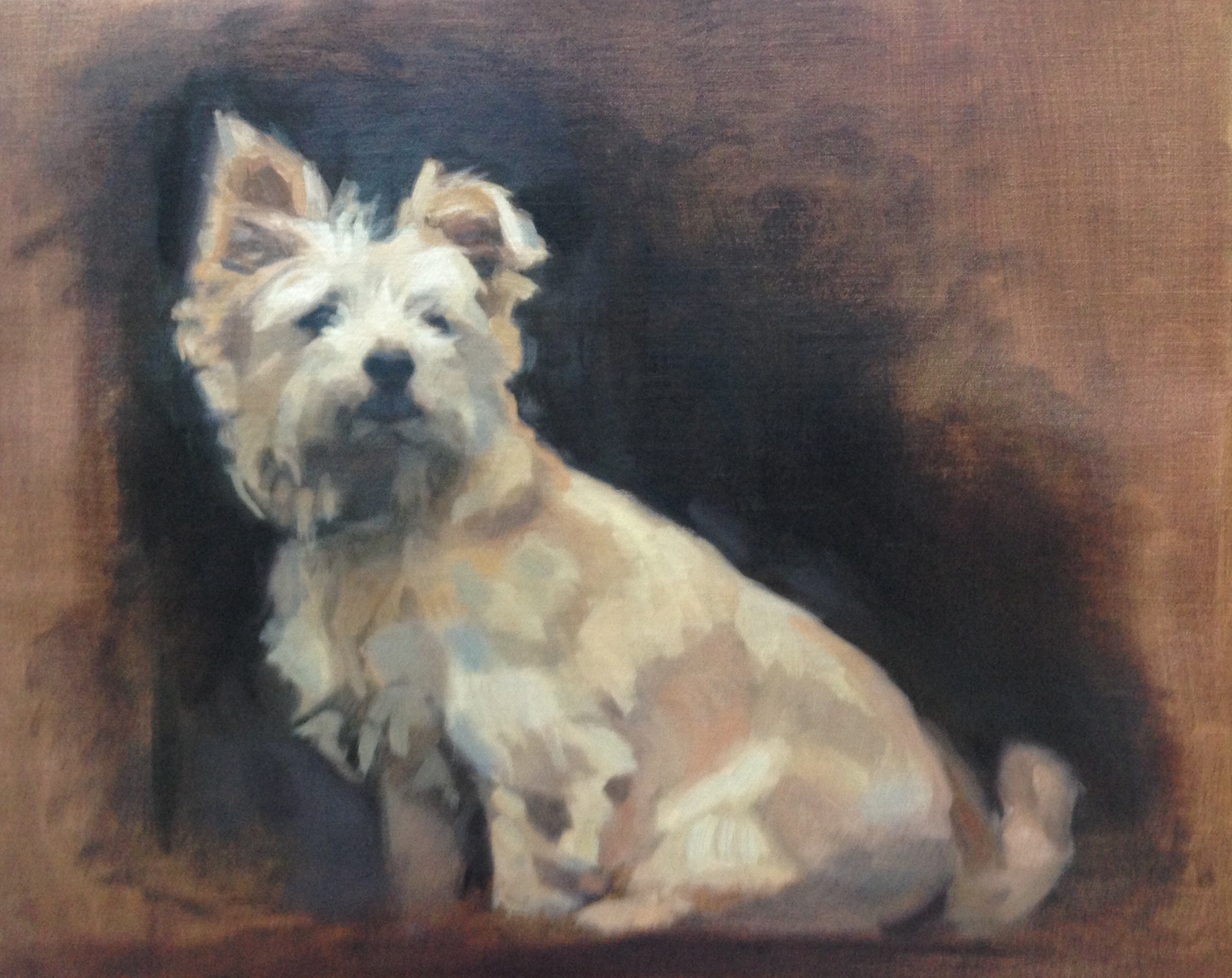 Oil on canvas, Norfolk Terrier. 16x20 inch.jpg