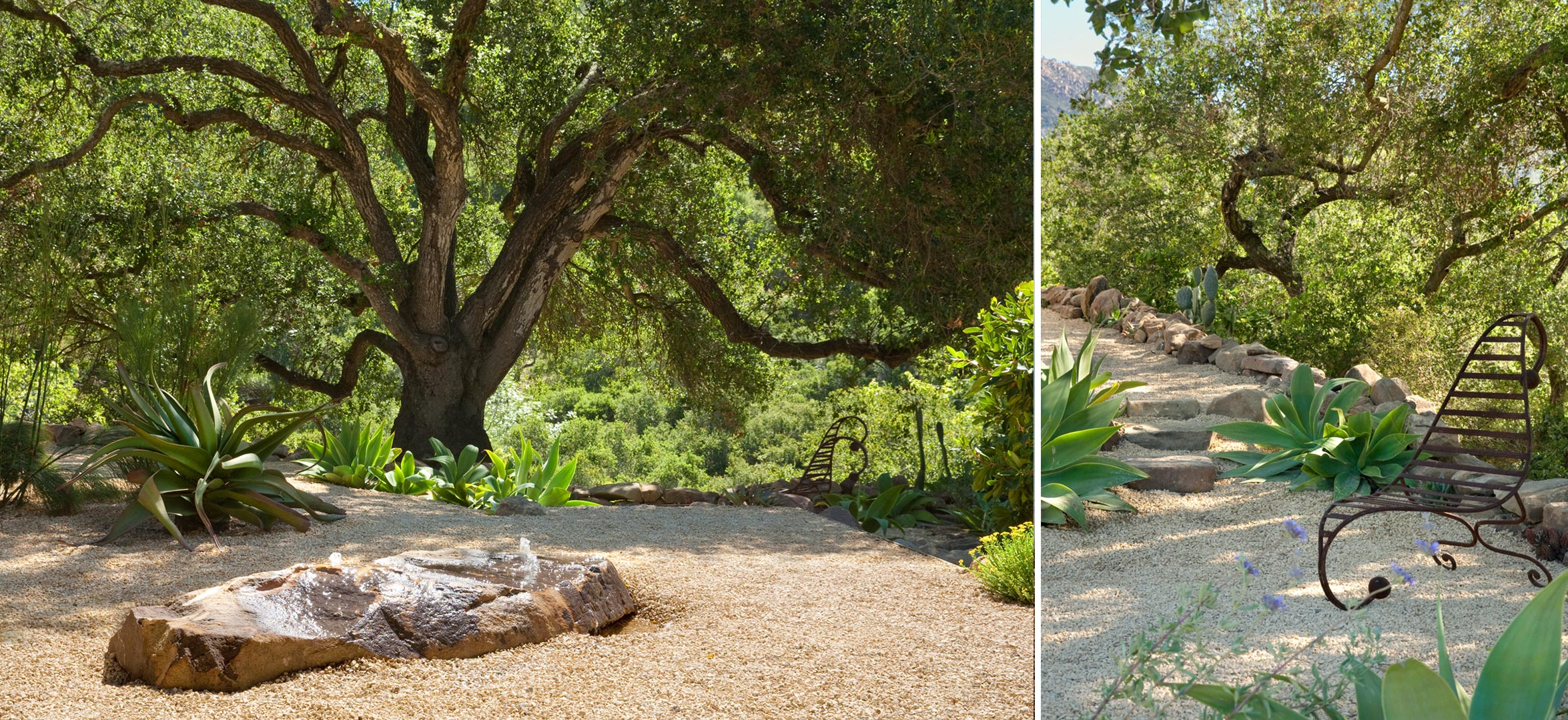2-boulder-fountain-oak-tree.jpg