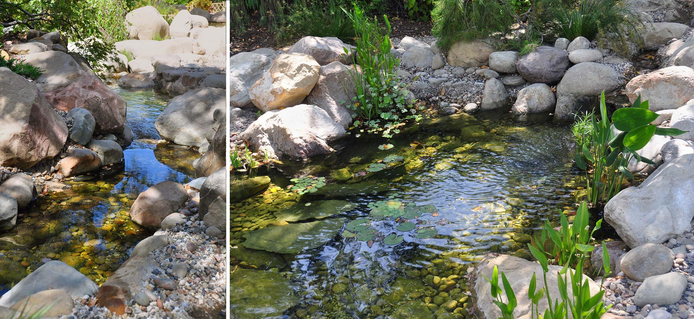 pond-boulders.jpg