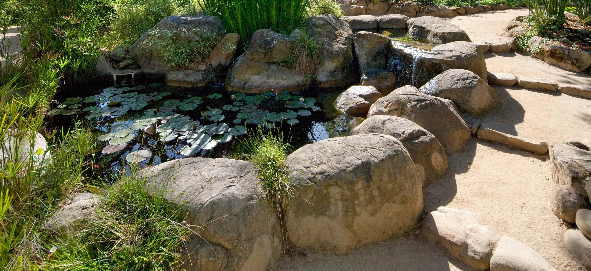 pond-dg-boulder-steps.jpg