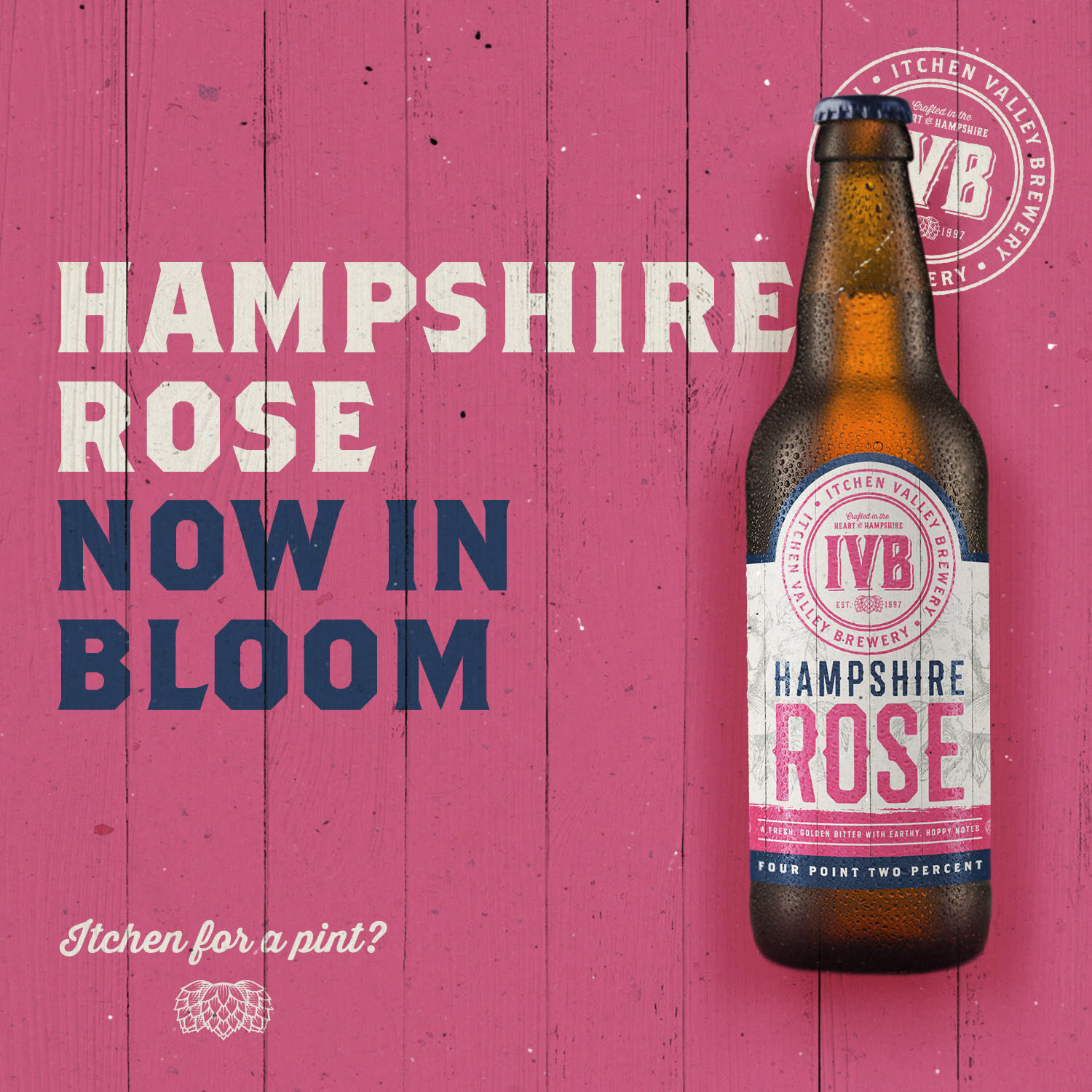 Hampshire Rose promo.jpg