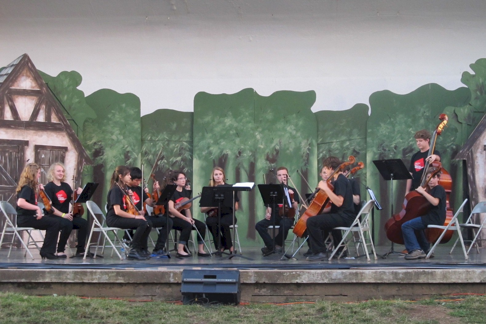Music City Youth Orchestra 2013-14 2A.jpg