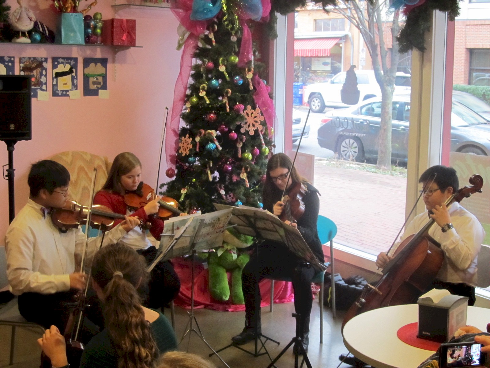 Music City Youth Orchestra 2013-14 5C.jpg