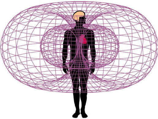 The Electromagnetic Field of the Heart (via HeartMath)