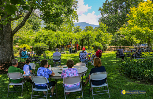 Friday Lunch on the Lawn at the SWVA Museum - Photo by Dale R. Carlson