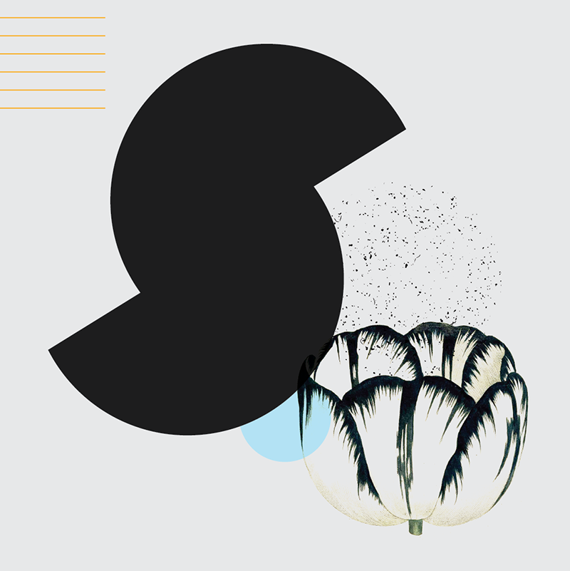 36daysoftype_part2-07.png