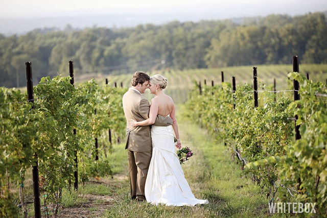 014_michelle_eric_raffaldini_vineyards_wedding_photography
