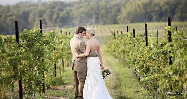 014_michelle_eric_raffaldini_vineyards_wedding_photography copy