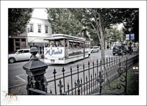 hilton-new-bern-bridal-party-trolley.jpg