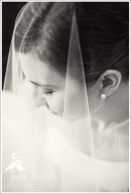 snipes-farm-wedding-bride1.jpg