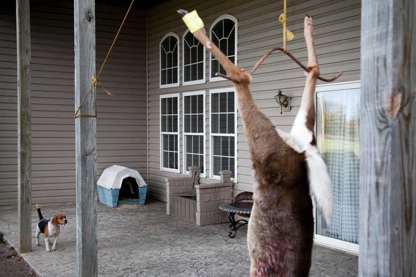 Deer Hunting Missouri Yearling Meat