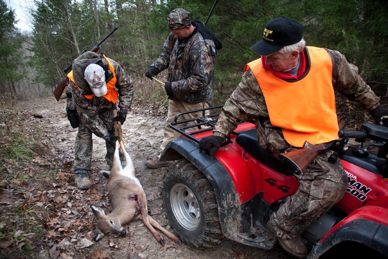 Deer Hunting Missouri Yearling