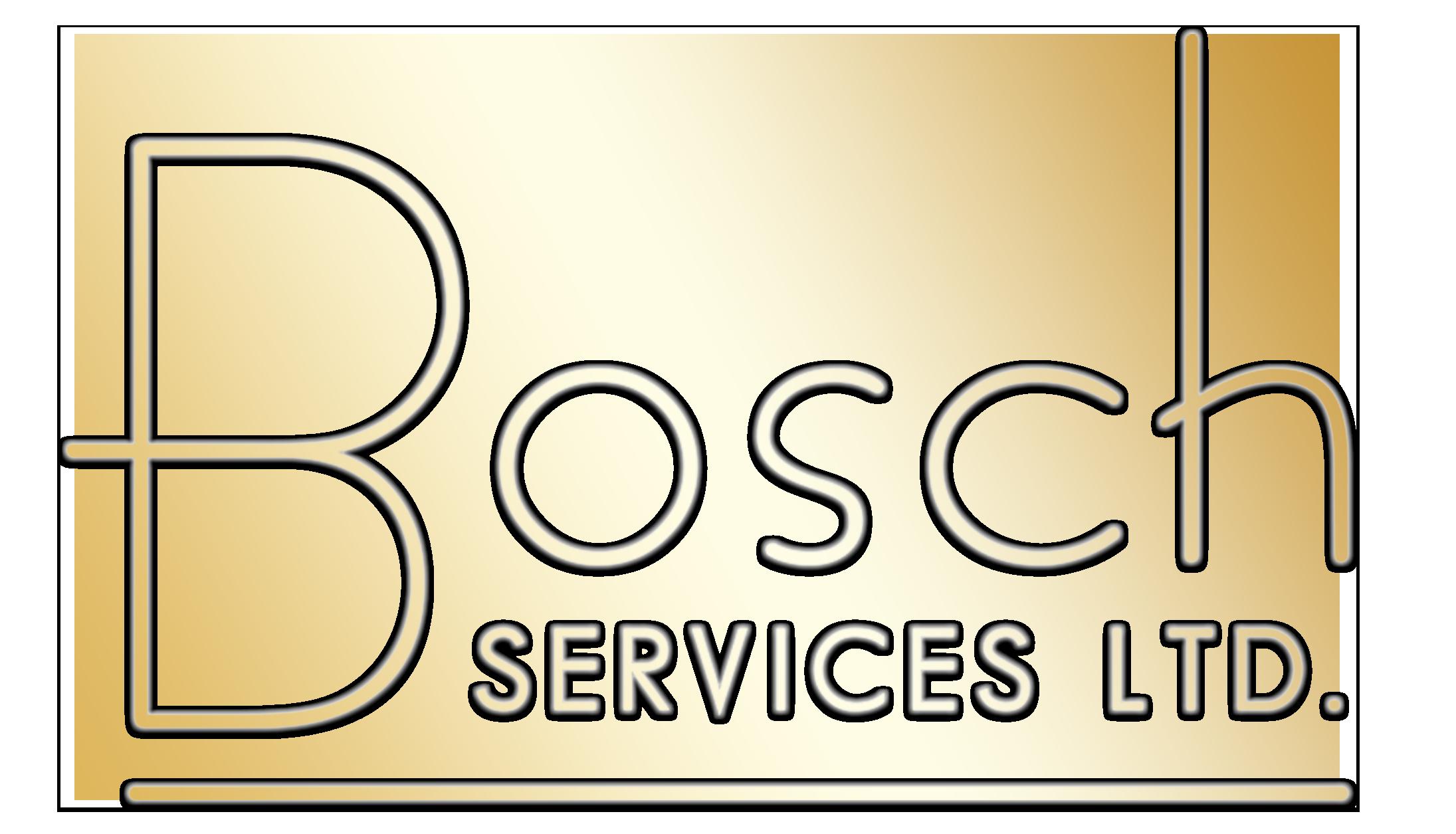 bosch-shiny3.png