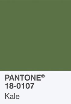 8ece8-pantonec2aekalepantonec2aekale.jpg