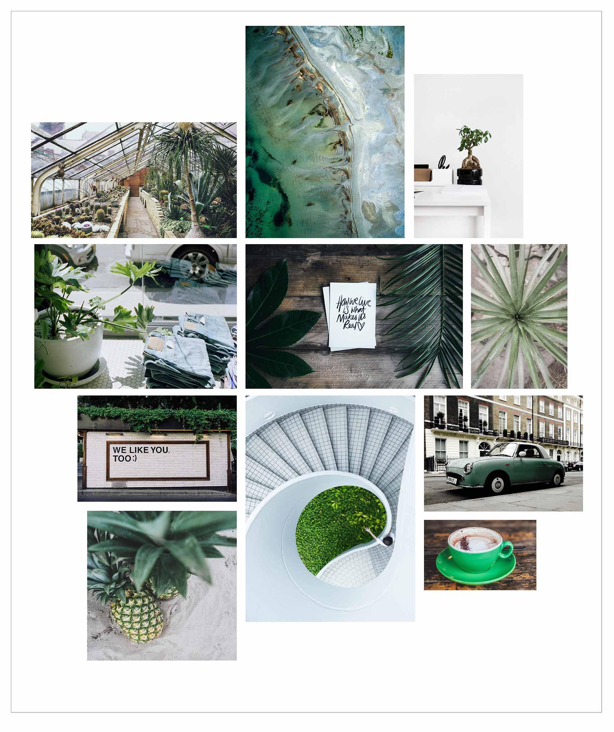 fa928-salt2bsassdesign3apantonec2aecolorgreencollagesalt2bsassdesign3apantonec2aecolorgreencollage.jpg