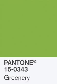 ff6ae-pantonec2aegreenerypantonec2aegreenery.jpg