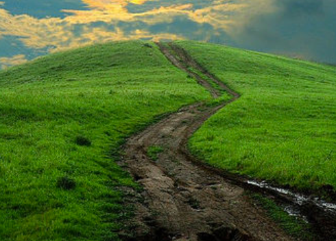 1 & 2 Samuel - Following God When It's Hard - In our study of 1 & 2 Samuel, we will see how hard it is for people to follow God's path. We will also see how necessary it is for us to follow Jesus, our permanent, perfect King and Priest.