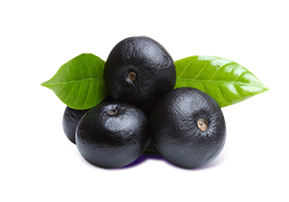 Acai Berry - stock image.png