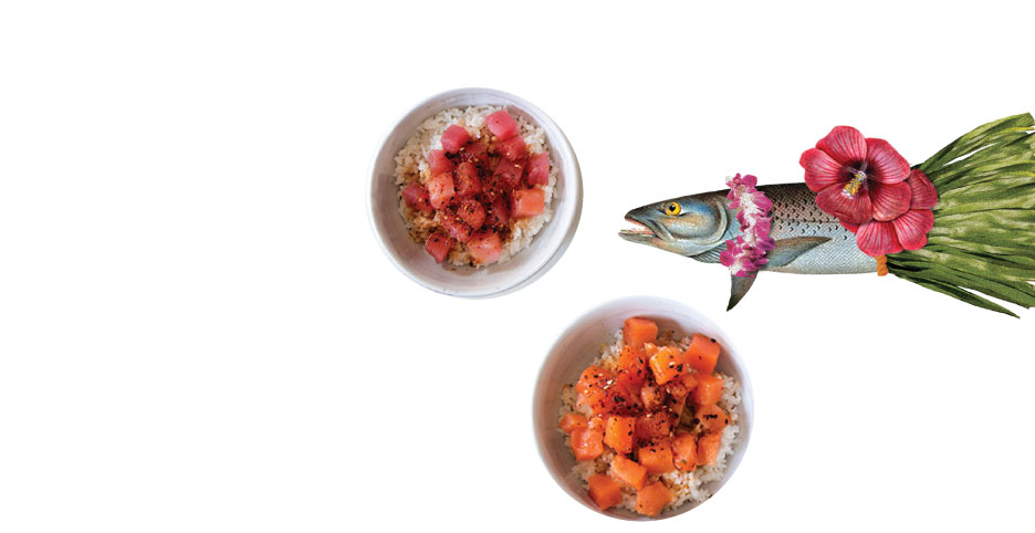 Blue Hill Bay Poke Bowls, available in Smoked Ahi Tuna and Smoked Salmon
