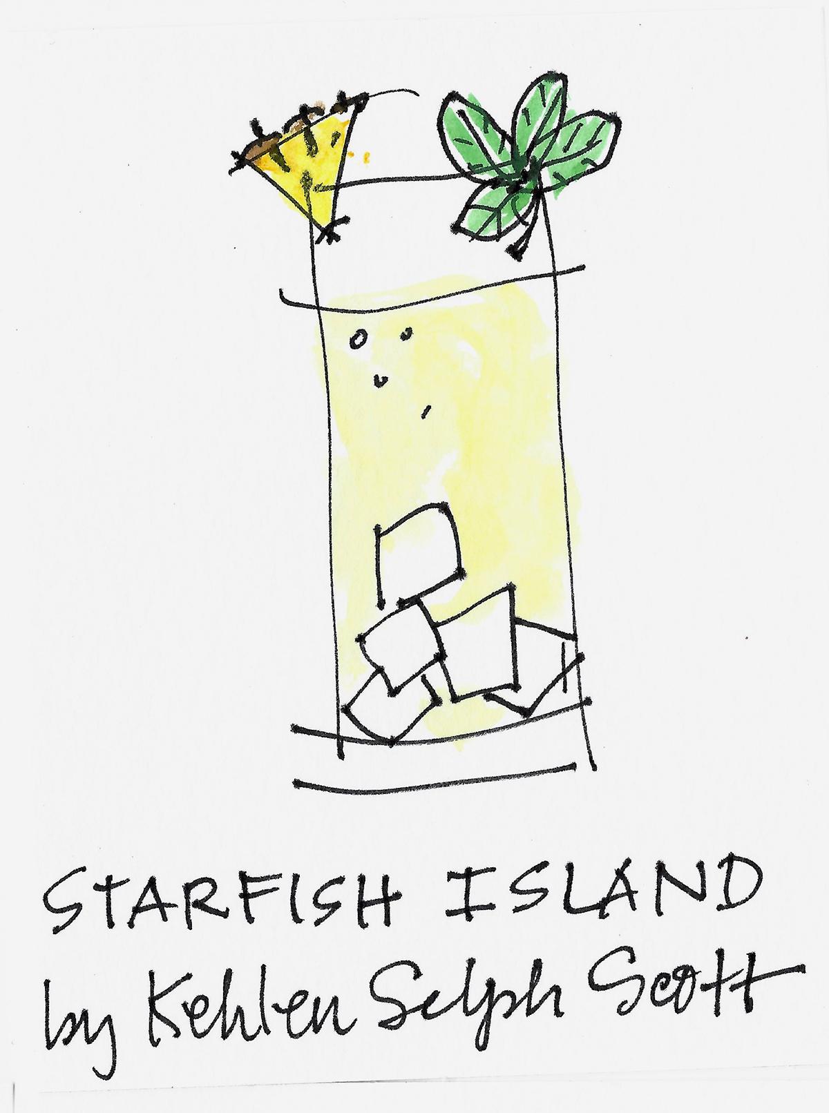 STARFISH ISLAND drawing by Amy C Evans.jpg