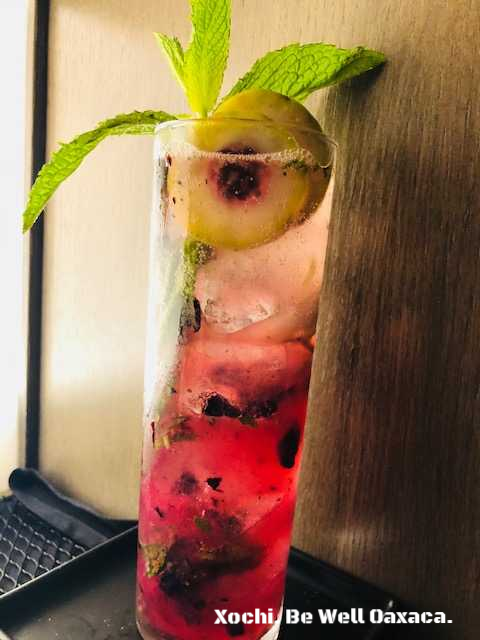 Xochi. Be Well Oaxaca. Prickly pear, bludberry, mint, poleo, lime, agave nectar and housemade ginger beer..png