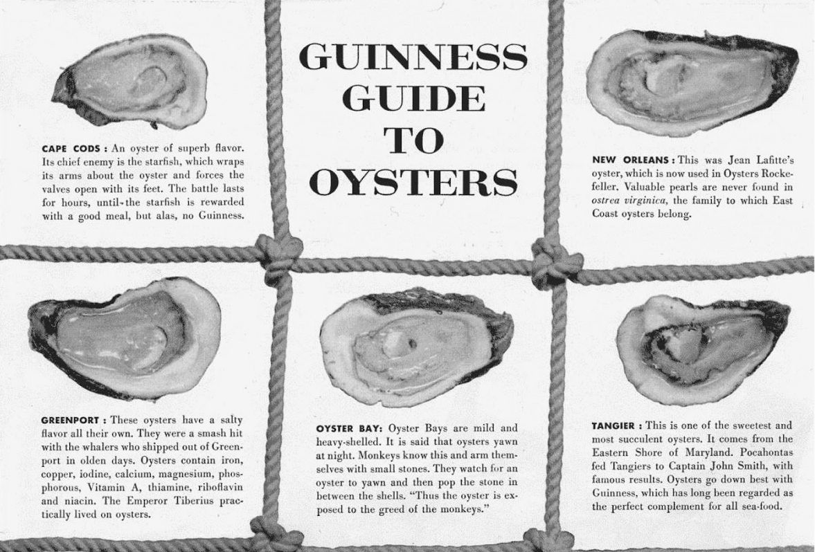 guinness guide to oysters.jpg
