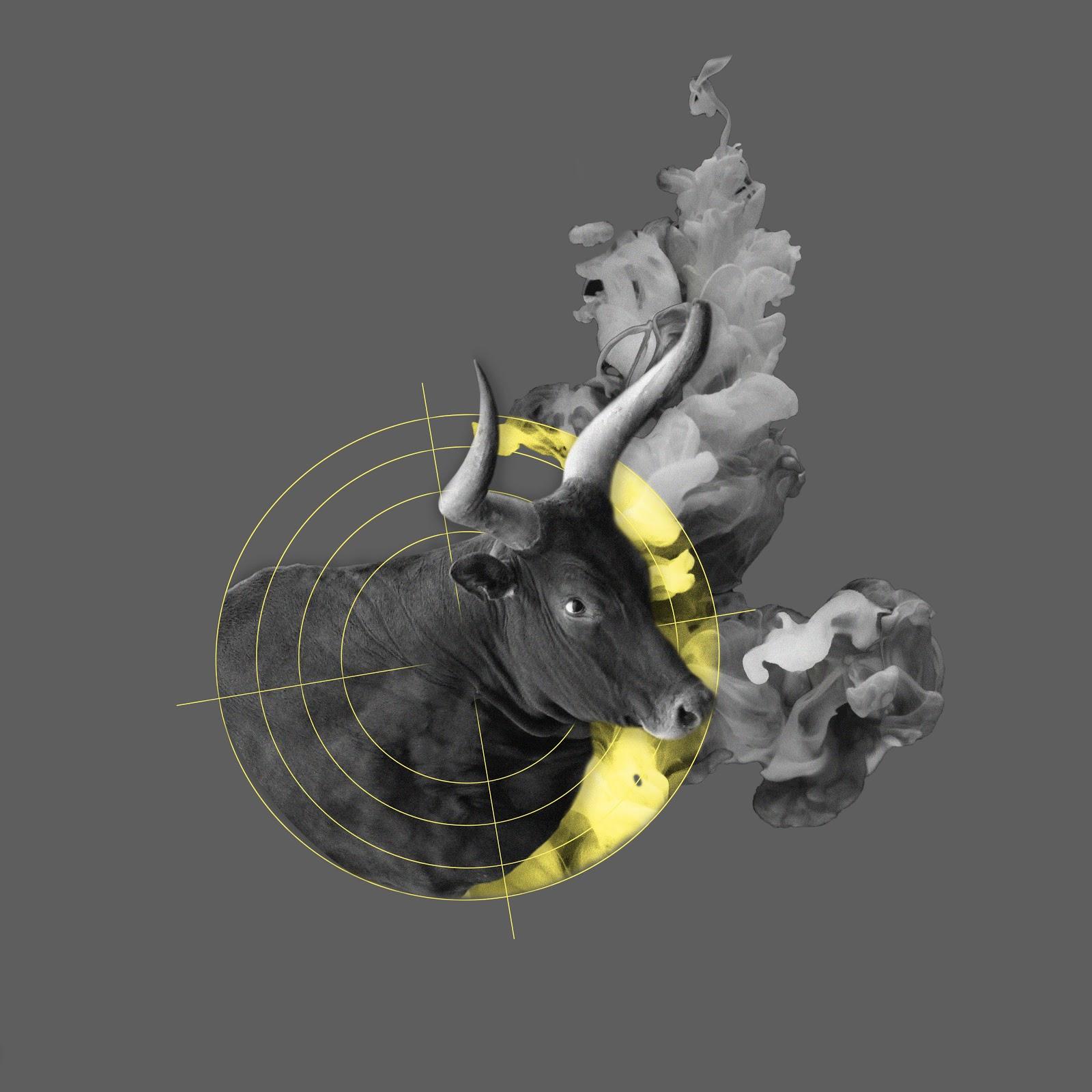 Bullseye Bullshit | Anna Warfield