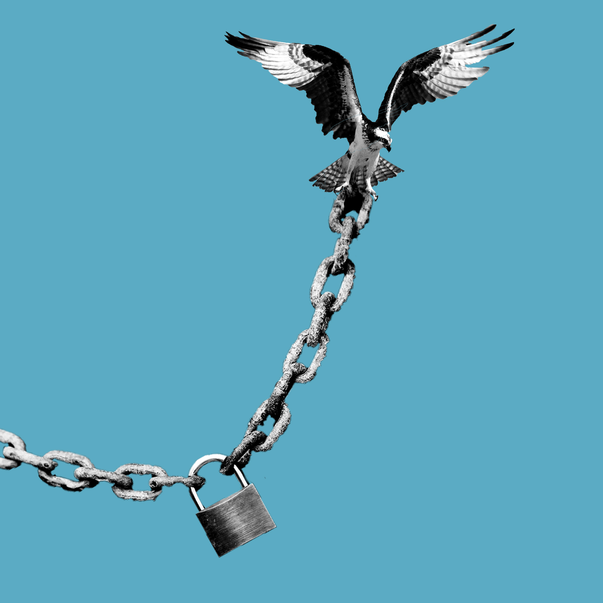 Break Free   Utsah Pandey