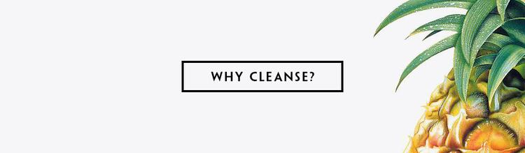 WHY_CLEANSE.jpg