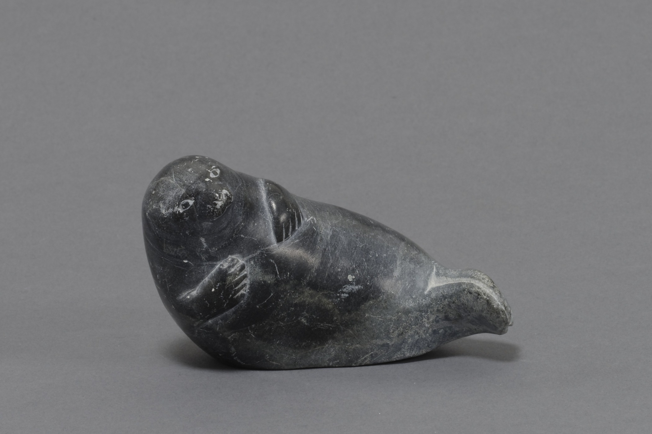 Iñupiaq, seal drag with a carved and engraved handle depicting a seal, collected 1905. Ivory and rawhide, 4 1/8 × 13/16 × 9/16 in. Hood Museum of Art, Dartmouth College: Bequest of Frank C. and Clara G. Churchill; 46.17.9651.