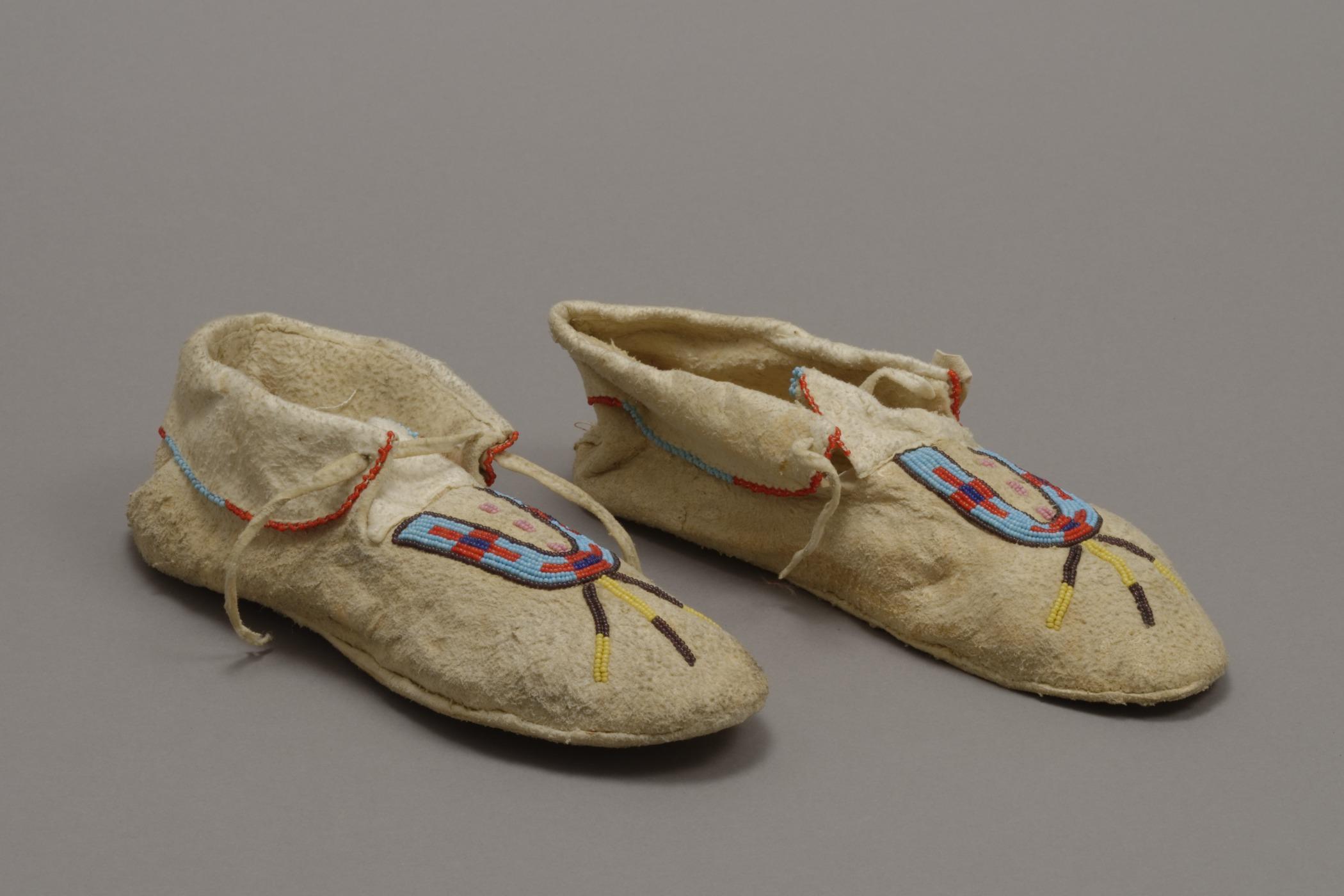 Niitsitapii (Blackfoot/Blackfeet)