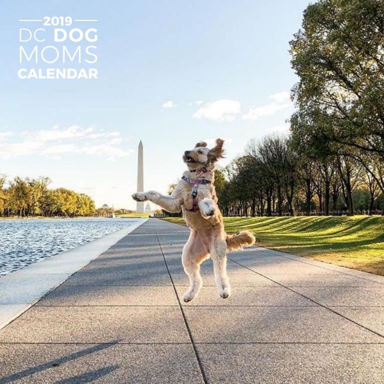 2019 Calendar Available Now -