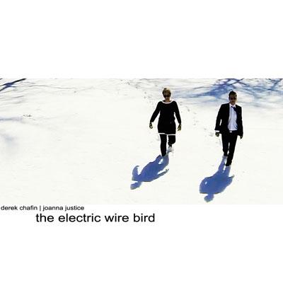 THE ELECTRIC WIRE BIRD (2014) - DEREK CHAFIN & JOANNA JUSTICE