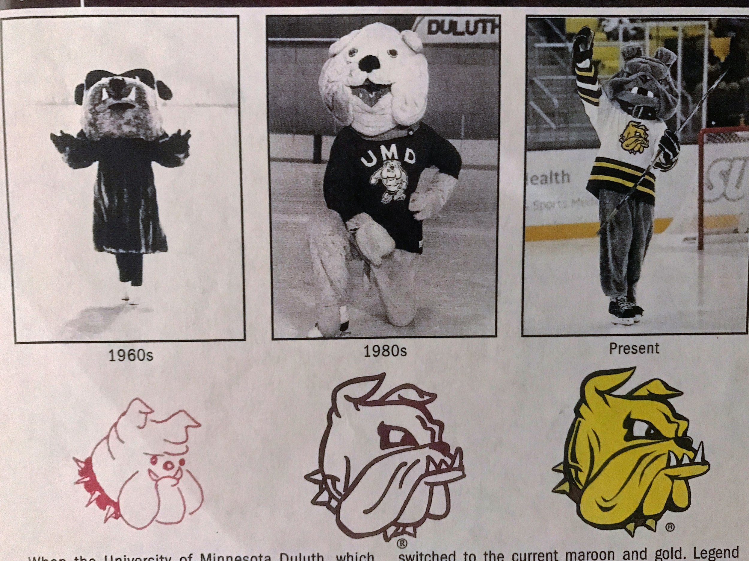 The evolution of the Bulldogs mascot through the years. Courtesy of Bob Nygaard