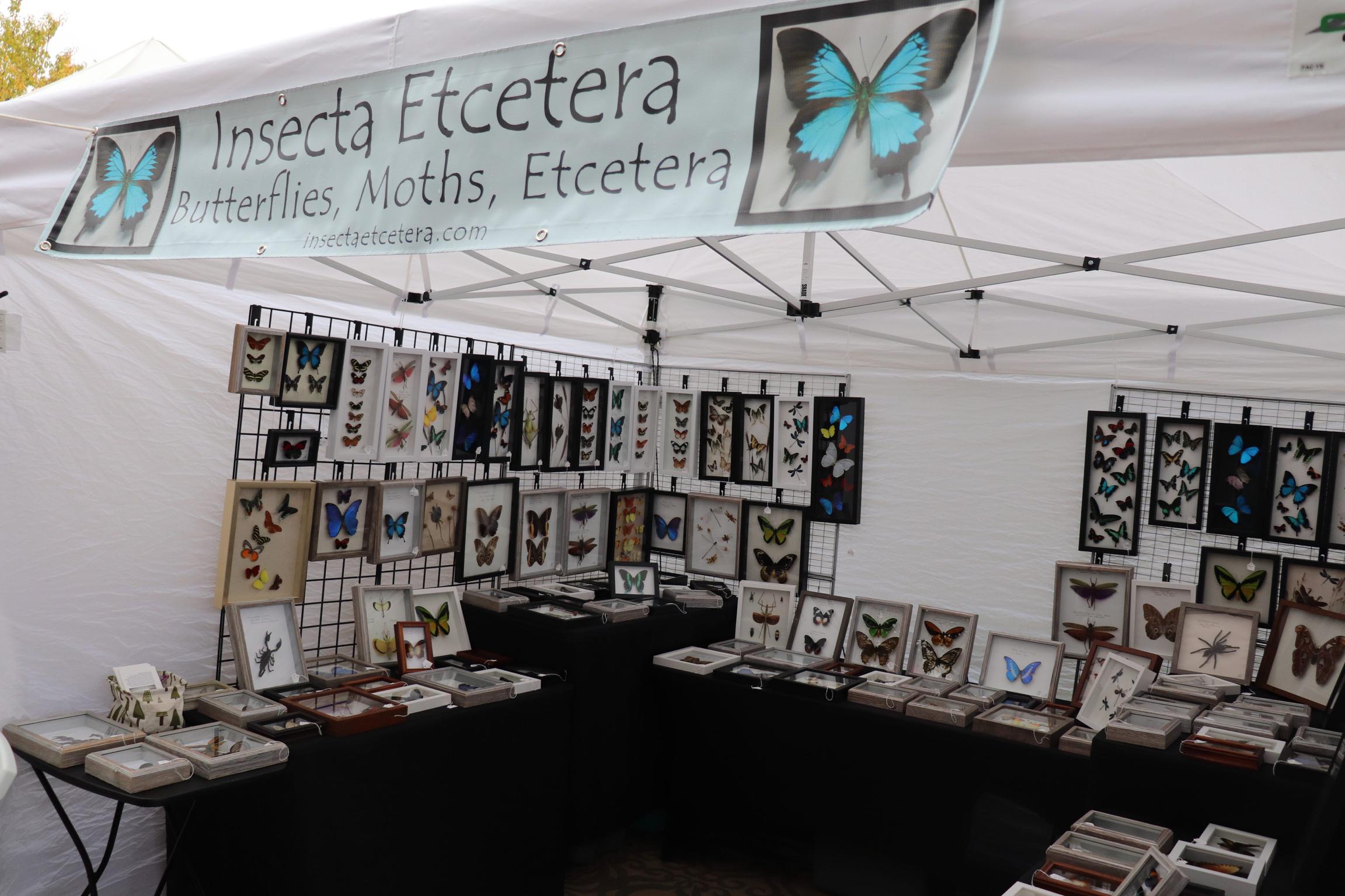 Insecta Etcetera. Photo courtesy of Nathan Casanova