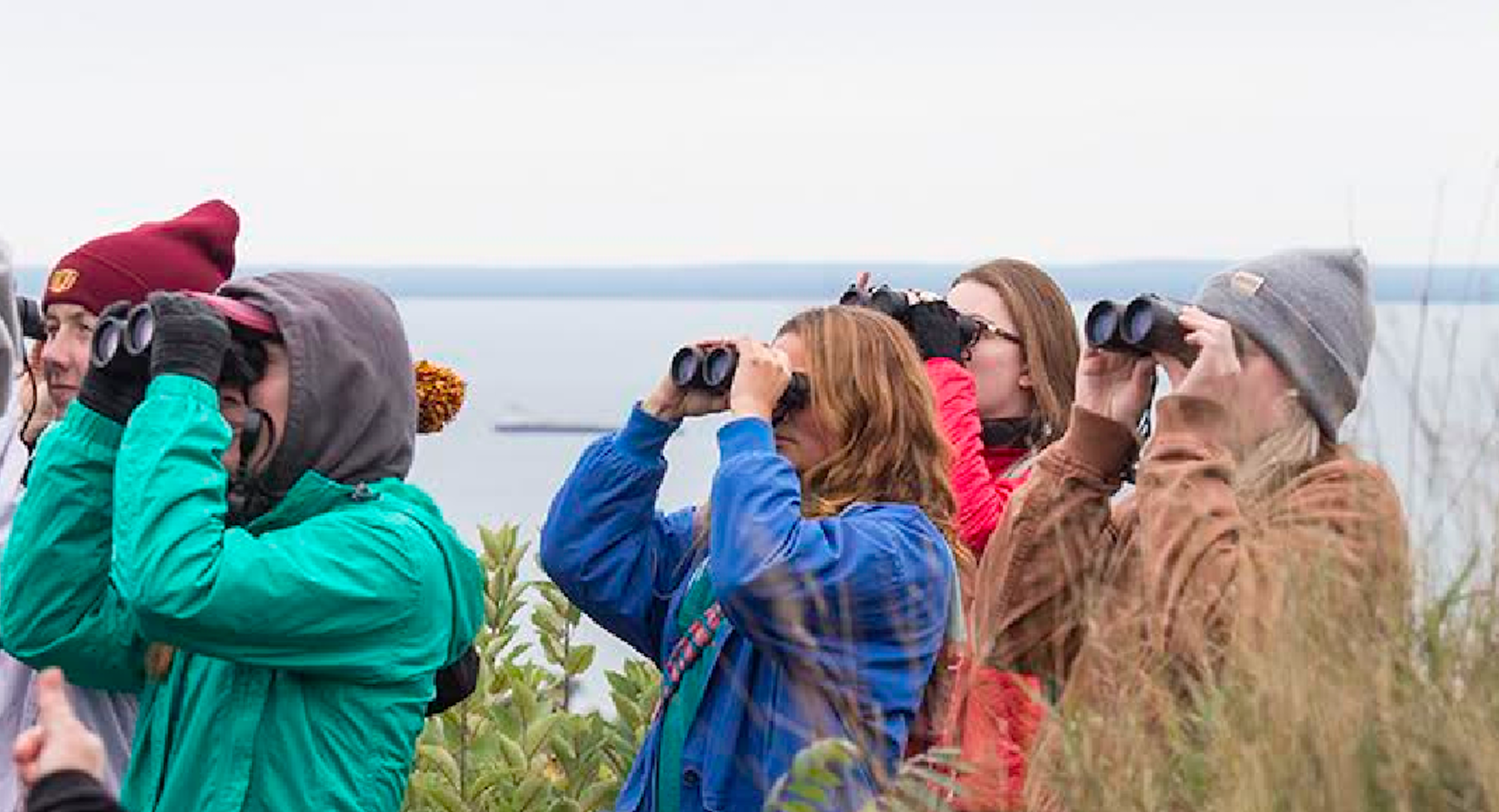 Students bird watching at an IonE event. Photo courtesy of Julie Etterson.