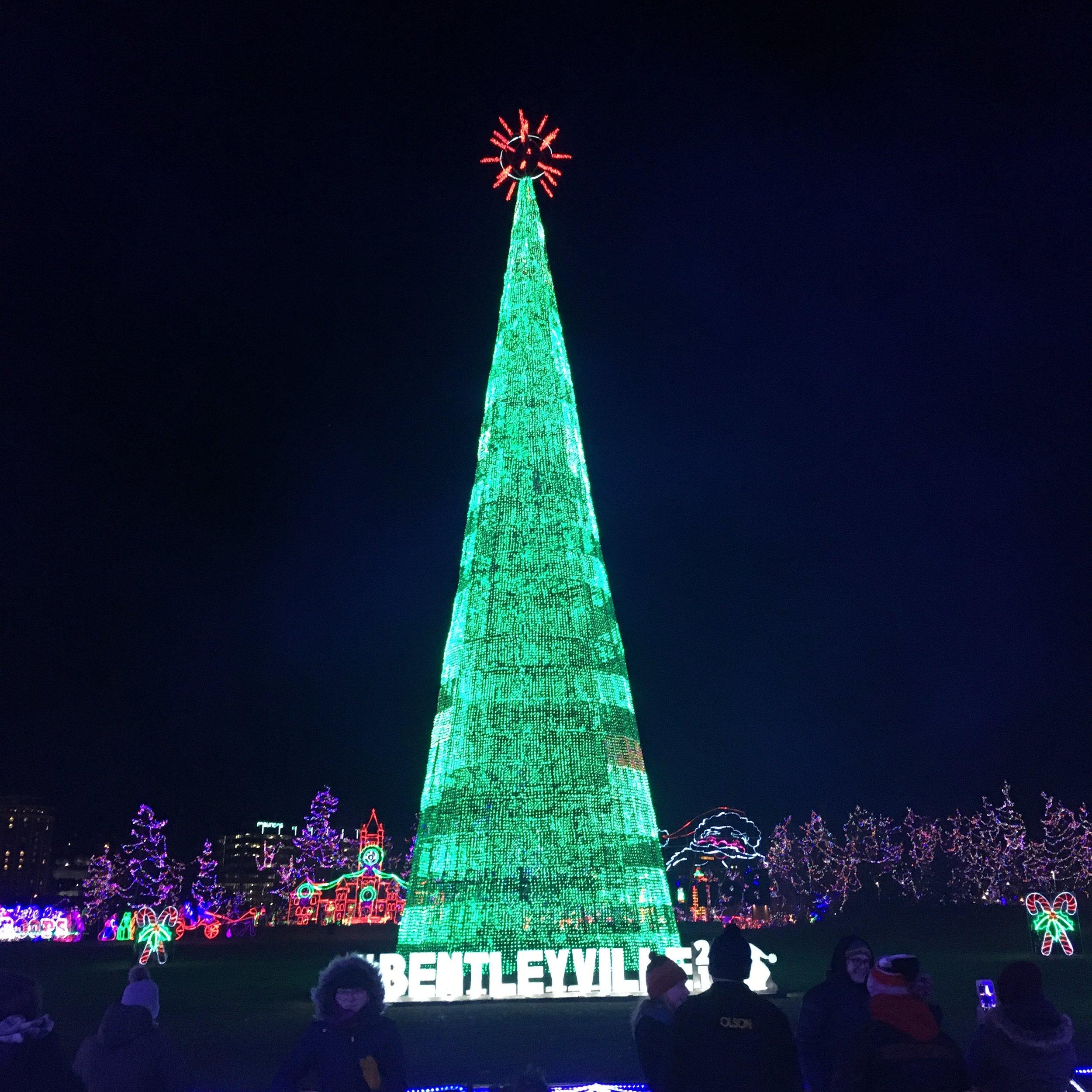 The 2018 Bentleyville tree. Photo courtesy of Rebecca Kottke