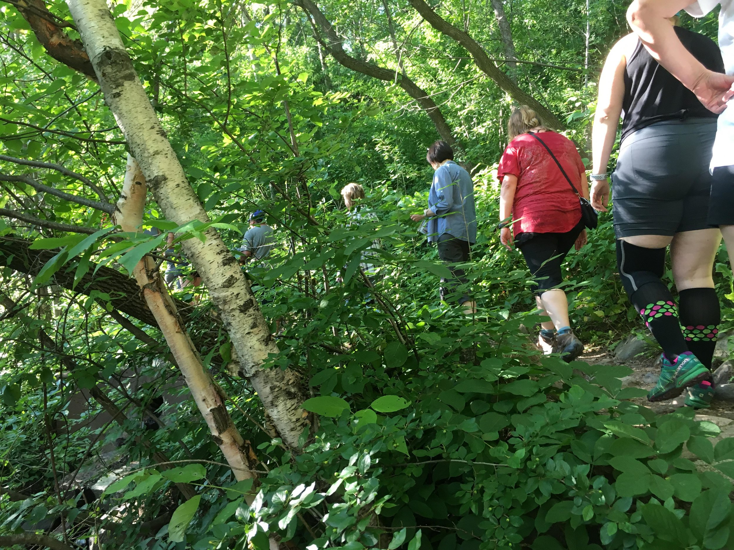 Women hiking for Women Hike Duluth's event in Lincoln Park on July 17, 2018. This program is for any woman with any hiking ability. Photo courtesy of Jessica Schoonover